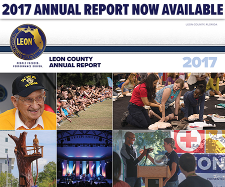 Leon County 2017 Annual report