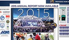 Leon County 2015 annual report