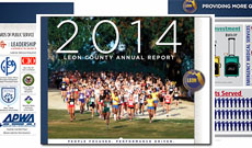 Leon County 2014 annual report