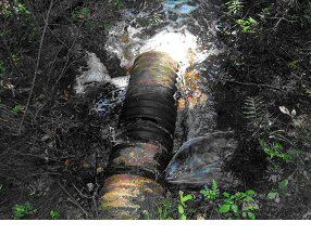 Damaged Outfall Pipe