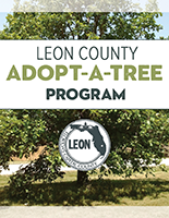 Click here for Adopt A Tree