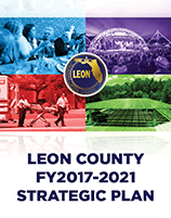 2017-2021 Strategic Plan