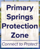 Primary Springs Protection